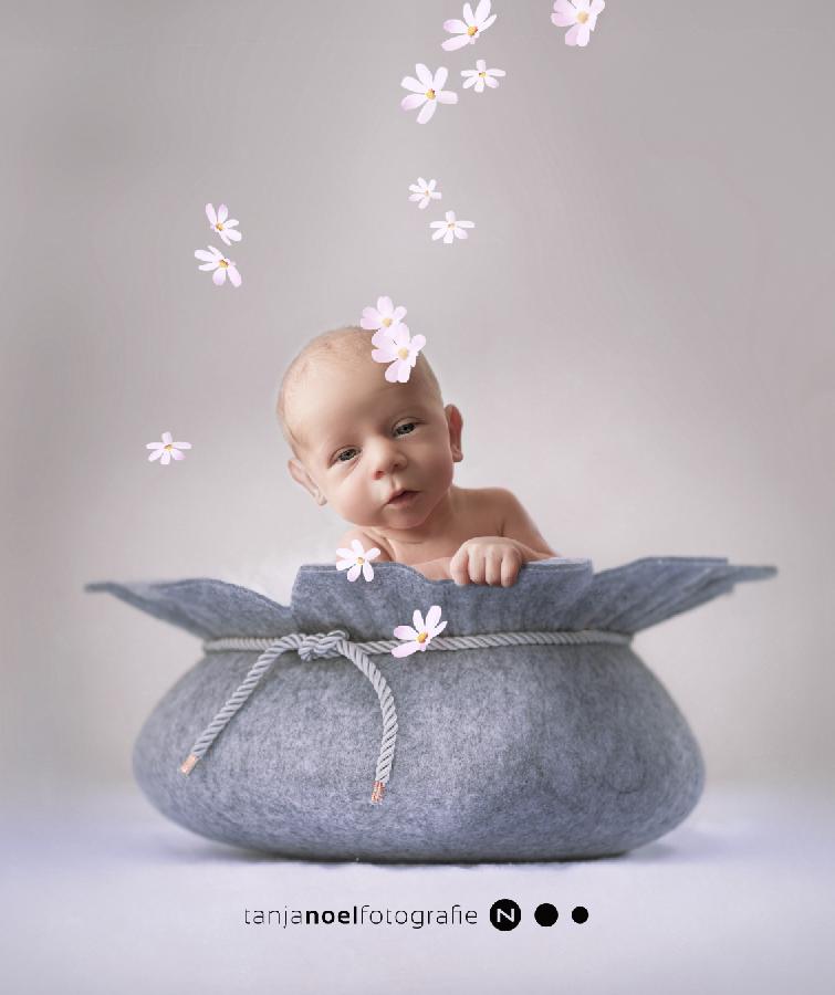 Newborn shooting, Babyshooting, Babybilder, Babyfotograf,